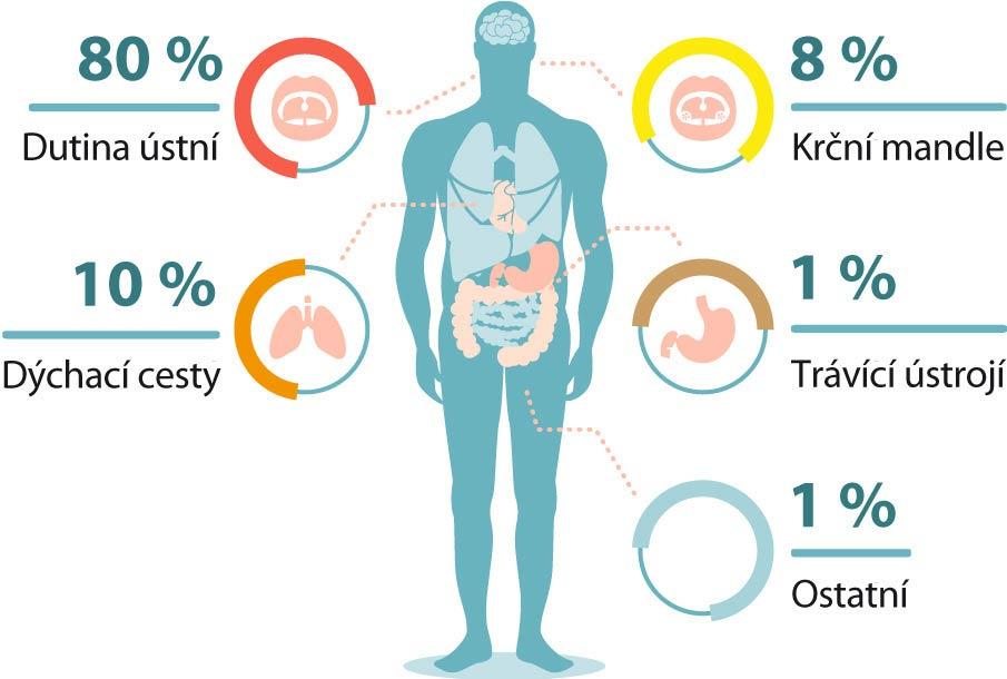 Příčiny zápachu z úst - 80 % dutina ústní - 10 % dýchací cesty - 8 % krční mandle - 1 % trávící ústrojí - 1 % ostatní příčiny